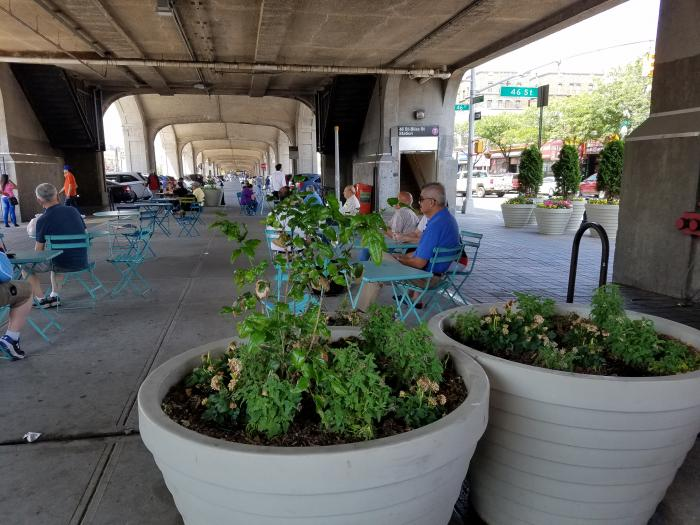 western_planters_bliss_plaza_2-6-13-18
